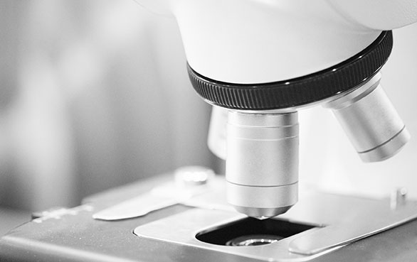 Conflict, Workplace Investigations and Mediation - Microscope Lense