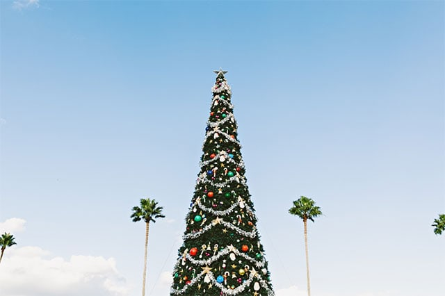 Christmas & Summer holidays: common employment issues