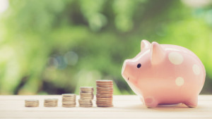 Pension Requirements halved