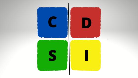 Extended DISC Questionnaire Diagram